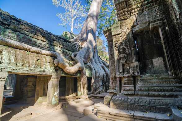 Ta Prohm temple at Angkor Wat in Cambodia.