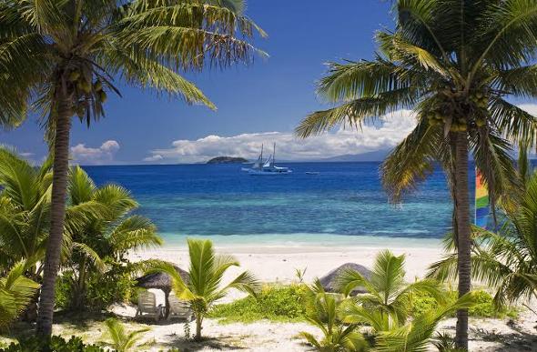 Fiji beach and palms.