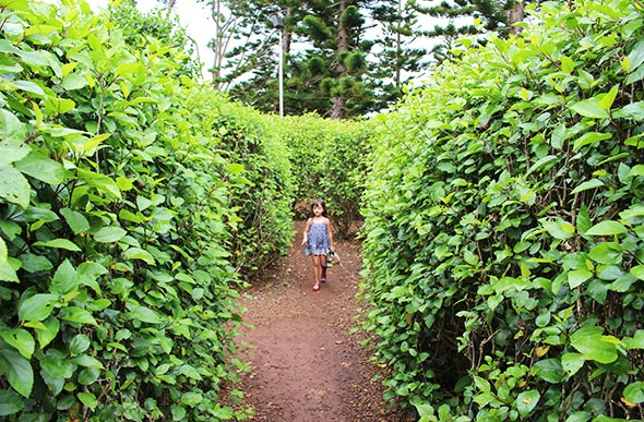 Awesome Oahu Activities For Kids