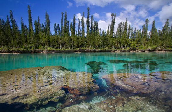 The New Caledonia Blue lagoon.