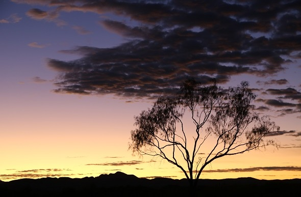 Sunrise on the Larapinta Trail NT