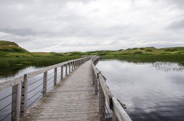 Greenwich boardwalk on Prince Edward Island