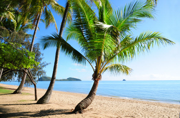 Coconut Island Queensland: We Asked, You Spoke: The Best Beaches In Queensland