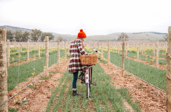 Girl riding a bike in a South Australian vineyard.