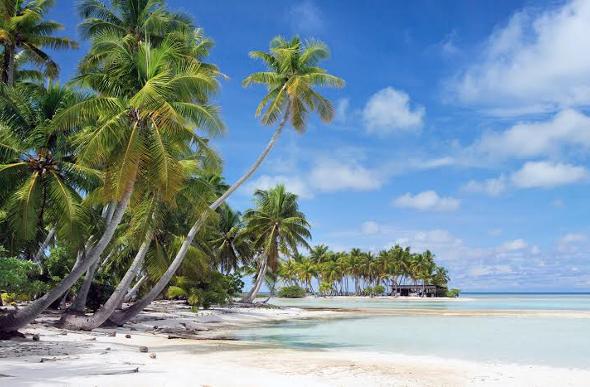 Tahiti beach and palms.