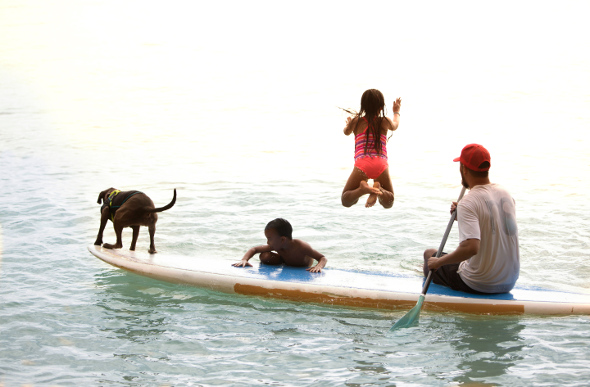 An instructor takes two children and the resident surfing dog out on a paddleboarding lesson at Turtle Bay Resort on Oahu's North Shore