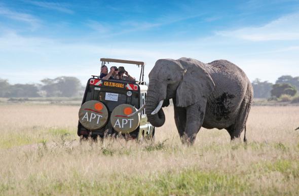 An elephant near a safari 4WD in Africa
