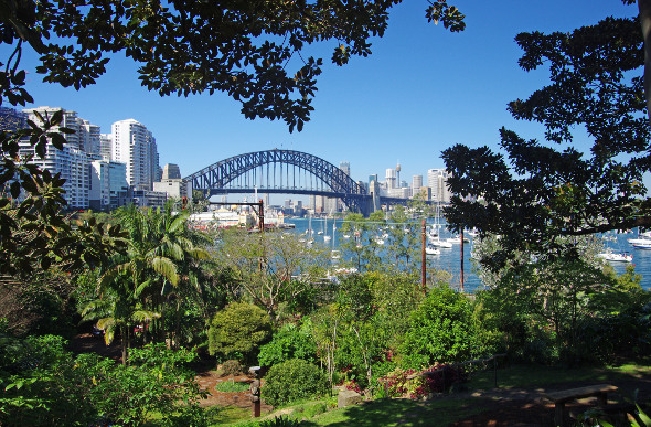 Wendy Whiteley's Secret Garden at Lavender Bay in Sydney, Australia.