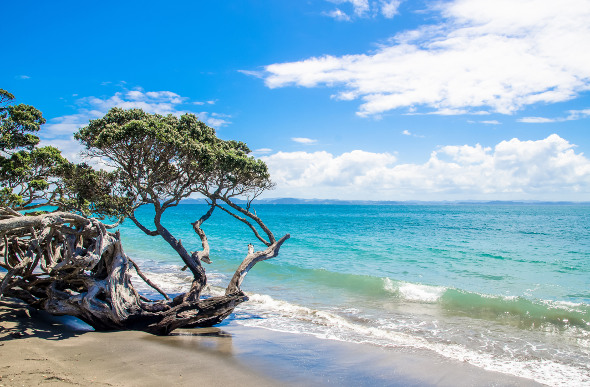 A stretch of beach along the Whangaparaoa Peninsula. Picture: Getty Images