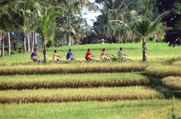 People cycling in Bali