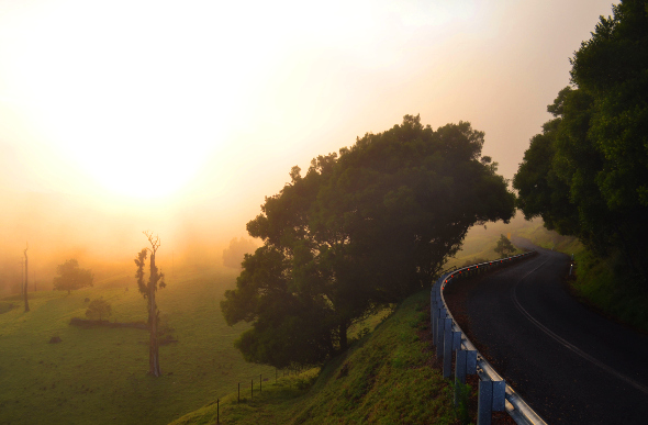 Brisbane day trip to misty mountain roads