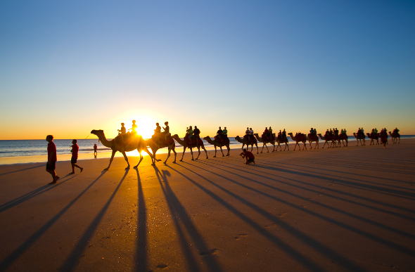 The sun casts long shadows as tourists ride camels along Western Australia's Cable Beach at sunset.