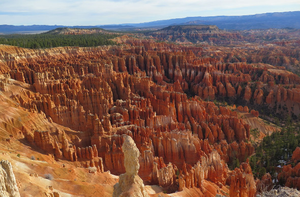 Rocks seem to come to life in Bryce Canyon, Utah, USA.