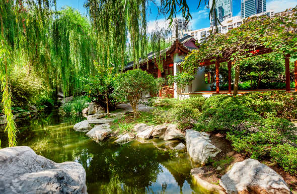 sydney u2019s chinese garden plays a starring role in the wolverine