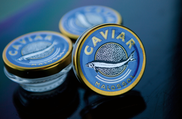Containers of caviar