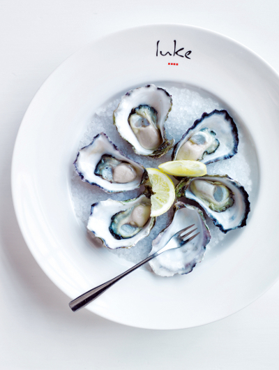 Oysters on a plate