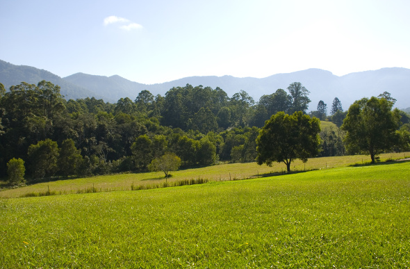 Rolling green hills in the Promised Land near Bellingen, New South Wales.