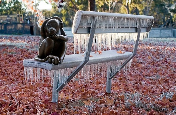 Brass monkey sitting on an icicle laced bench.