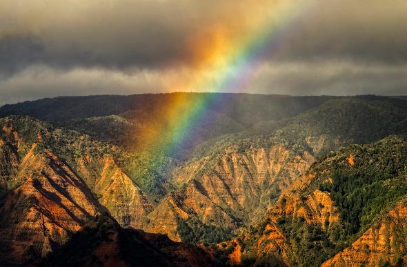 A rainbow rises above Hawaii's Waimea Canyon.