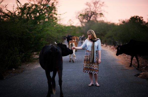 Cows passing a woman under a pink sky