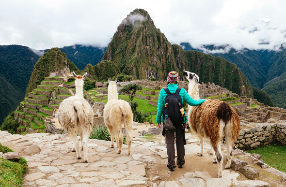 Traveller standing on an outcrop with llamas looking at Machu Picchu