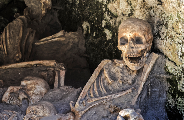 Skeletons at Herculaneum
