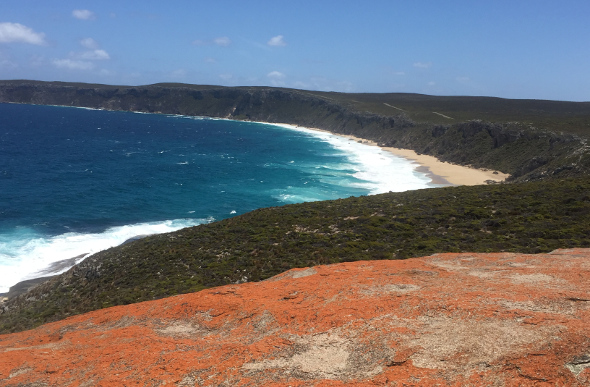 Green cliffs, yellow sand and bright blue water on Kangaroo Island coastline