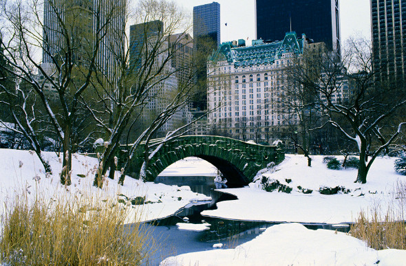 central park under snow image new york convention and visitors bureau - New York Christmas