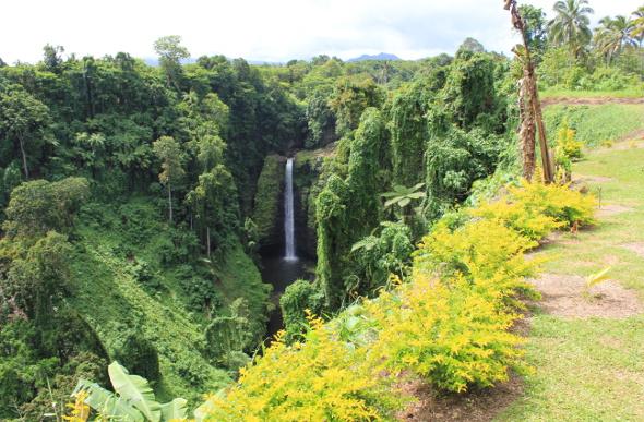 The towering Papapapaitai Falls as seen through lush forest