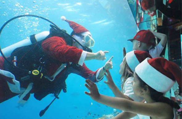 Christmas Under The Sea at Anantara