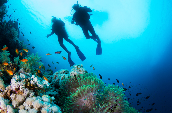 Samoa - The Best Place To Learn To Dive