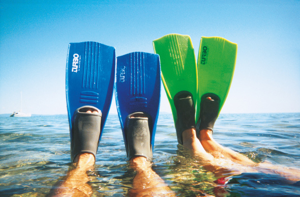 Flippers stick out of the water as snorkellers lie back at Blue Pearl Bay on Hayman Island.