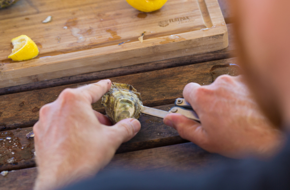 Shucking oysters in Coffin Bay