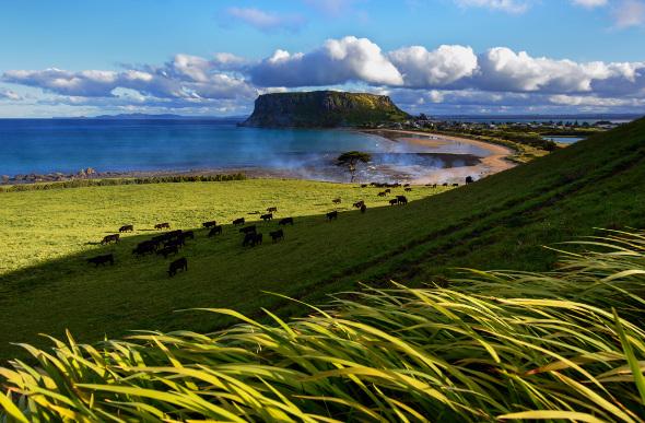 Tasmania's Most Alluring Experiences