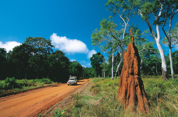 A four-wheel-drive heads past a termite mound beside a red dirt road on the way to Cape York.