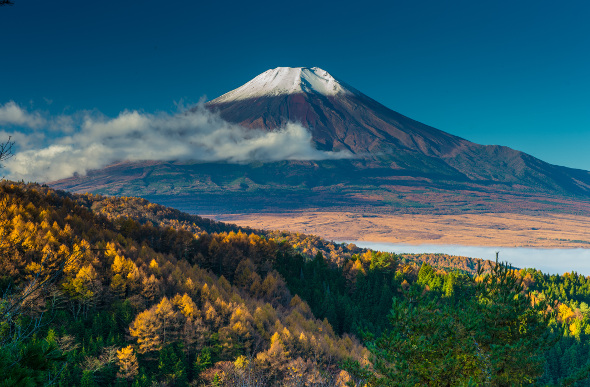 Mt Fuji white capped and looming in autumn
