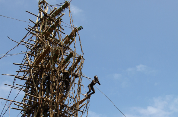 A boy leaps from a tower made of wood and vines, as part of the land-diving ceremony on Pentecost Island in Vanuatu.