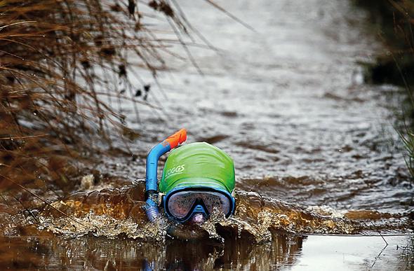 bog-snorkelling