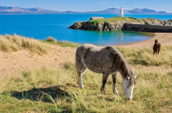 wales island