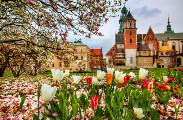 The stunning architecture atop Wawel Hill.