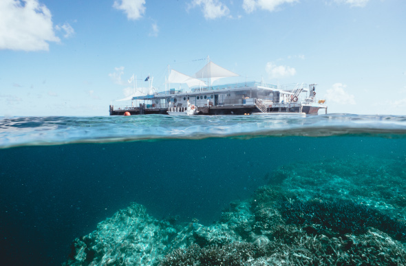 The Reefworld pontoon floats above a hidden world of coral on Hardy Reef at the Great Barrier Reef in the Whitsundays.