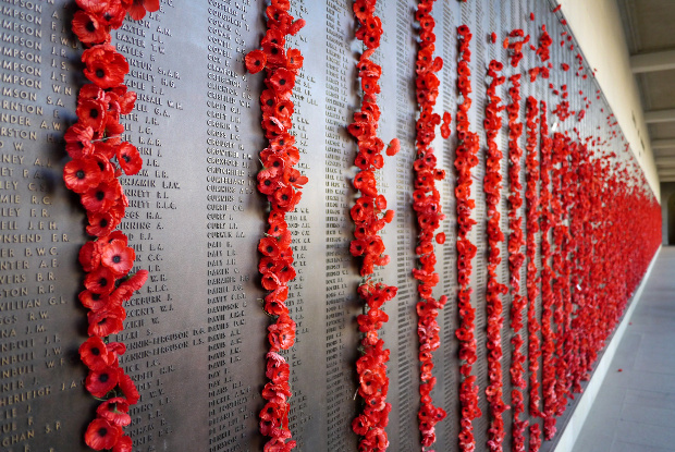 The Roll of Honour wall at the War Memorial
