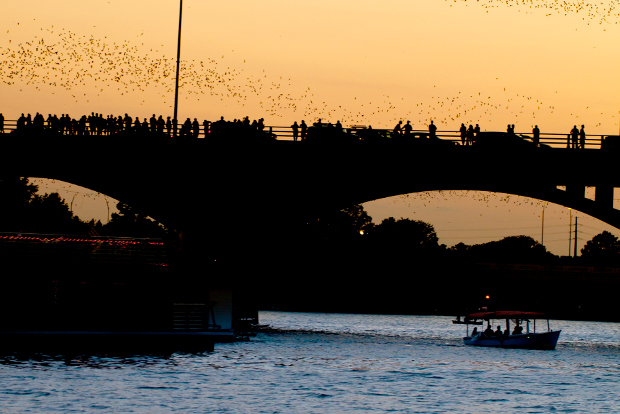 A dusk view of the Congress Bridge with the bat colony starting to fly overhead