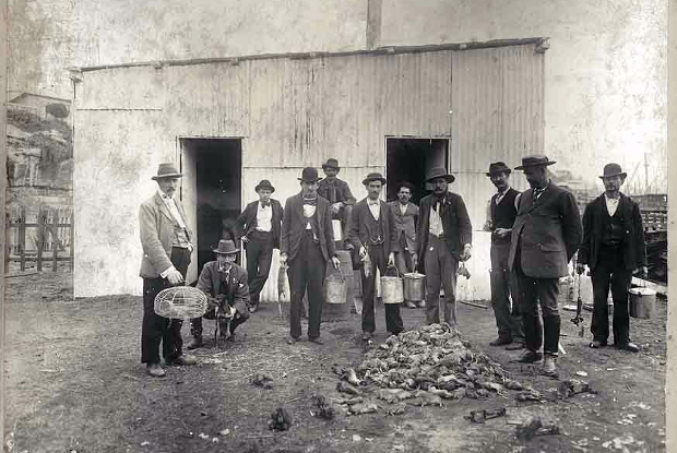Rat-catchers standing around a pile of dead rats