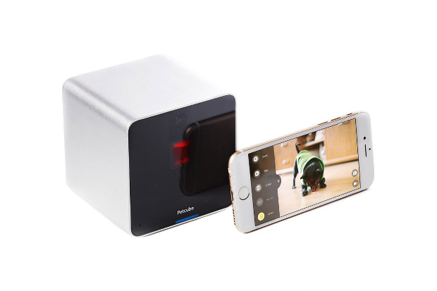 A petcube camera and smartphone showing the app working