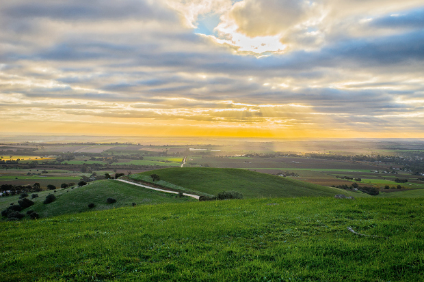 An expansive view over the farms of the Barossa at sunset
