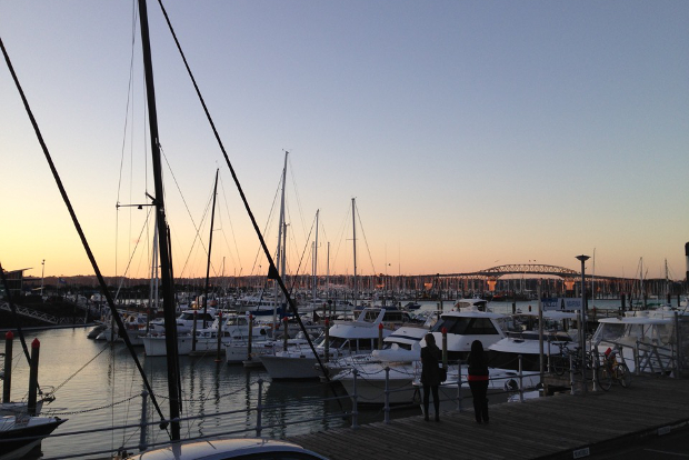 A sunset view of the luxury yachts anchored in Auckland's harbour