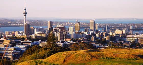 Auckland: City Skyline