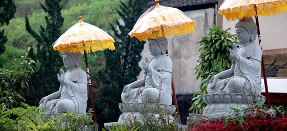 Bali: Buddhas