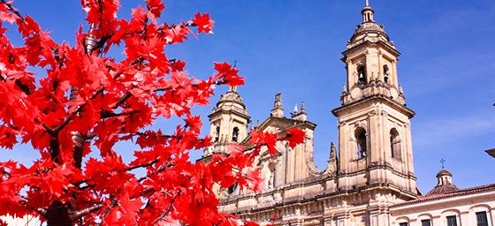 Bogota: Catedral Basiiica Metropolitana de la Inmaculada Concepcion, La Candelaria